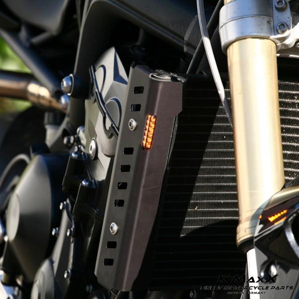 Triumph Street Triple Kühlerverkleidung inkl. LED-Blinker